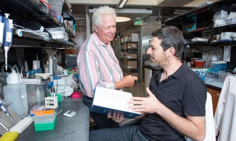 Los investigadores adaptan la inmunoterapia CAR-T para atacar el reservorio latente del VIH