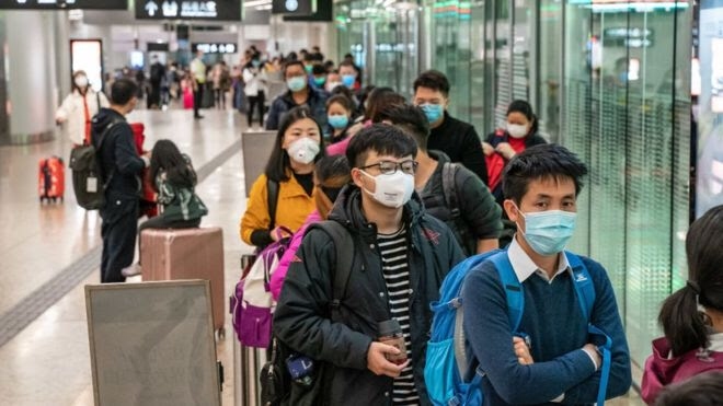 Coronavirus: ¿Por qué nos contagiamos con enfermedades de los animales?