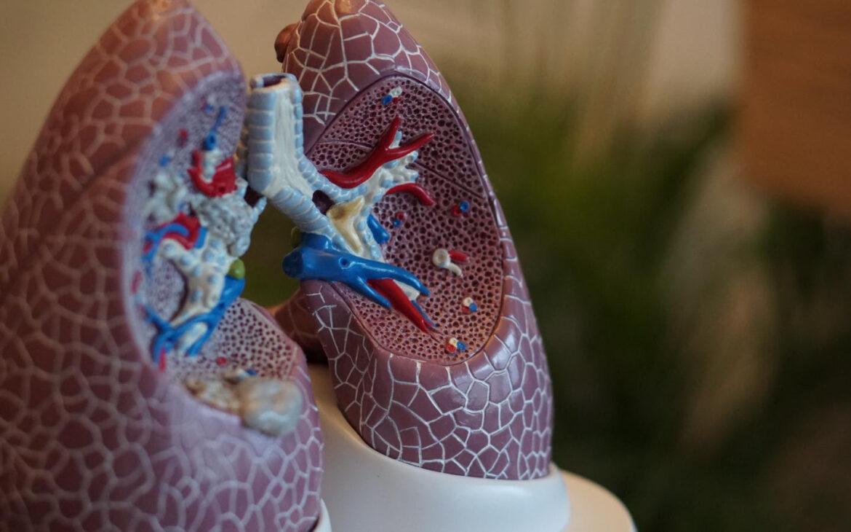 Los estudios de la Sociedad respiratoria europea,  destacan los efectos a largo plazo del COVID-19