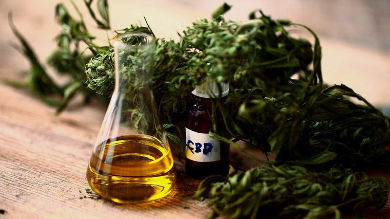 Cómo las terapias a base CBD,derivado del cannabis, podrían  ayudar a combatir la inflamación por COVID