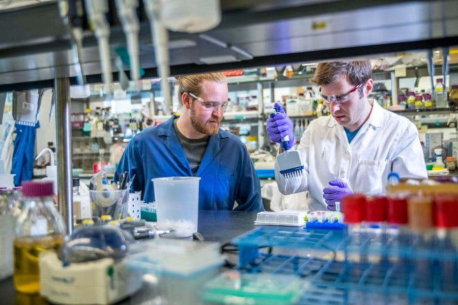 Los resultados graves de COVID-19 pueden mejorar con bevacizumab